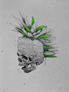 Ludo - Punk Pineapple